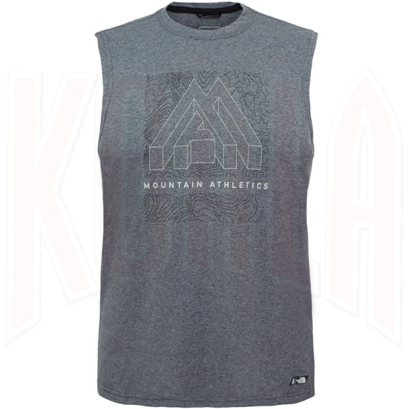 Camiseta The North Face GRAPHIC REAXION
