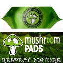 Magnesio en BOLSA  330grs. Mushroom Pads