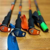 Bastones de esquí de travesía