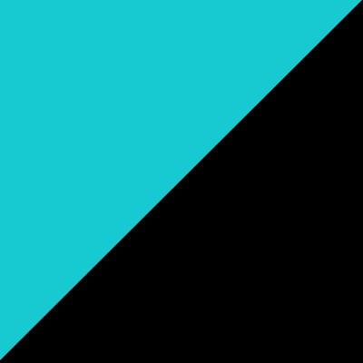 Black_Teal